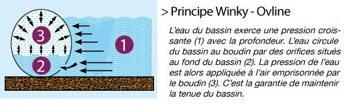 principe-winky-ovline.jpg