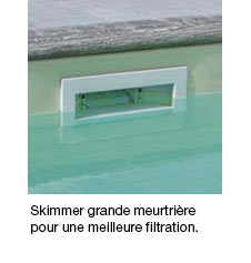 https://www.piscines-hydrosud.be/medias_produits/imgs/skimmer-grande-meurtriere-piscine-gardipool.jpg
